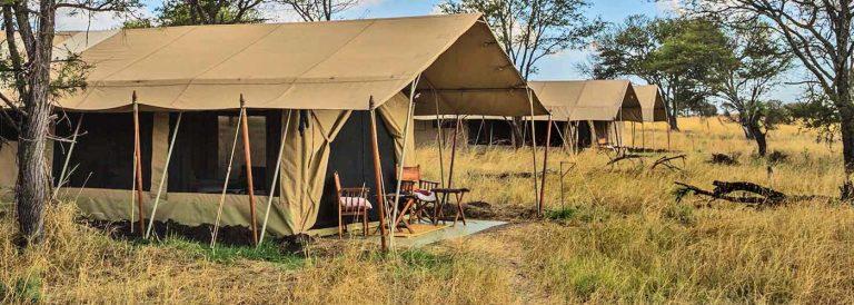 7 Days African Safari Tour